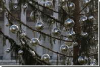 Российские туристы сравнили рождественскую елку в Риме с туалетным ершиком