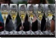 Рейс из Москвы в Цюрих прервали из-за любительницы шампанского