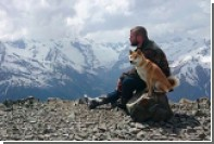 Потерпевшего фиаско пса не пустили в Китай