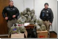 Пенсионеры в США подготовили 30 килограммов рождественской марихуаны и попались