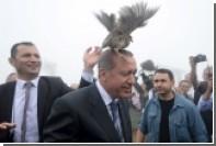 Турецким мужчинам запретили краситься в черный