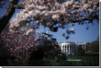Первая леди США потребовала спилить самое старое дерево перед Белым домом