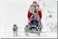 Дед Мороз запустит собственные «криптодедульки»