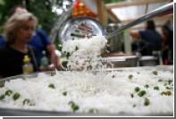 В России поищут пластиковый рис