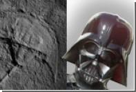 Палеонтологи нашли «Дарта Вейдера»