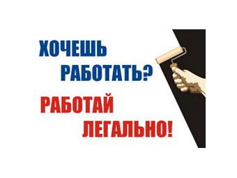"""""""Молодая гвардия"""" взялась за легализацию гастарбайтеров"""