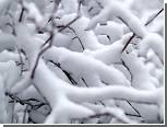 Москву завалит снегом, а Крещенских морозов не будет
