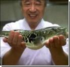 Посетители ресторана отравились опасной рыбой