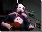 Латвийцы показали Человеку - свинье кукиш, а не Евровидение