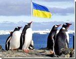Украинцы в Антарктиде сами себе напечатают бюллетени на выборы