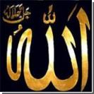 Художника пытались убить за карикатуру на Пророка