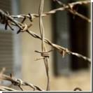 В Луганске заключенные СИЗО полтора месяца рыли подкоп