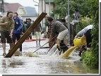 Вслед за крокодилами на затопленные улицы австралийских городов повадились акулы