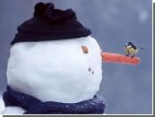 В Киеве стартовал фестиваль снеговиков