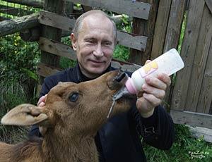 """Путин снова отказался от предвыборных дебатов / И посоветовал оппонентам поспорить с """"нашими братьями меньшими"""""""