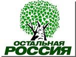 """""""Остальная Россия"""" задумала реформу Общественной палаты"""