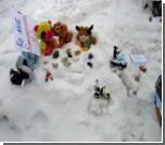 """В Барнауле на митинг вышли игрушки  / """"Это все-таки несанкционированное публичное мероприятие"""""""