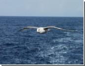 В Ормузском проливе произошел инцидент между кораблем ВМС США и иранскими катерами