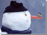 В Киеве открылся фестиваль снеговиков