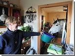 Шотландская пенсионерка поселила у себя дома лошадь