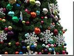 В Волгоградской области с уличной елки попытались украсть гирлянду