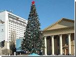 Жителям Ставрополя предложили обменять новогодние елки на пальмы