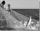 В Россию возвращается бесплатная рыбалка