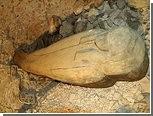 В Долине Царей впервые нашли не царскую мумию