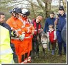 В Британии 35 пожарных 6 часов тянули пони из колодца. ФОТО