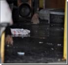 ДТП в Запорожье: окровавленных пассажиров маршруток выгружали на носилках. ФОТО