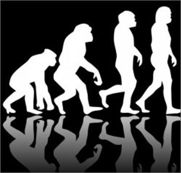 Треть американцев не верят в эволюцию человека
