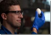Ученые вернули сваренное яйцо в исходное состояние