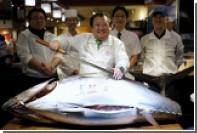 На последних в токийском Цукидзи торгах продали самого большого тунца