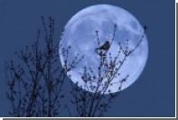 Фазы Луны связали с уровнем осадков на Земле