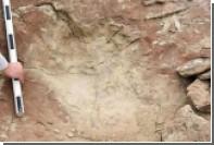 Ученые оценили шансы человека убежать от тираннозавра