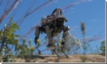 Роботов Google не возьмут в морскую пехоту США