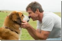 Universal отменила премьеру «Собачьей жизни» из-за обвинений зоозащитников