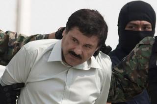 Мексика выдала США наркобарона Коротышку