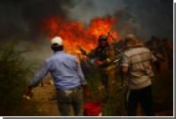 В Чили из-за лесных пожаров погибли 10 человек
