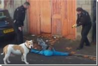 Британские полицейские по ошибке напали на своего советника по расовым вопросам