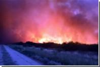 В Аргентине начались мощные лесные пожары