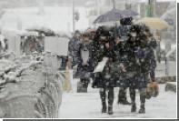 Жертвами снегопадов в Японии стали три человека