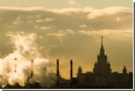 МГУ обзавелся «Ноевым ковчегом» с электронным гербарием