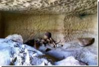 В Египте обнаружено двенадцать гробниц с детьми и животными