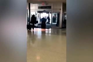 Пассажирке самолета запретили использовать павлина от стресса
