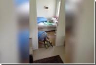 Полутораметровую игуану поймали под детской кроватью
