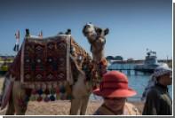 Российским туристам придется повременить с пляжами Египта