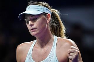 Оценены шансы Шараповой выиграть Australian Open