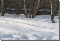 В России вновь выпал цветной снег