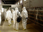 КНДР согласилась ввести ядерный мораторий